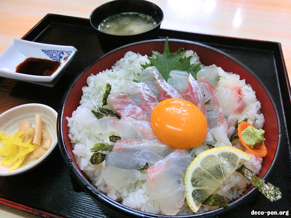 「刺身スタイル鯛丼」創業100年【出雲屋】