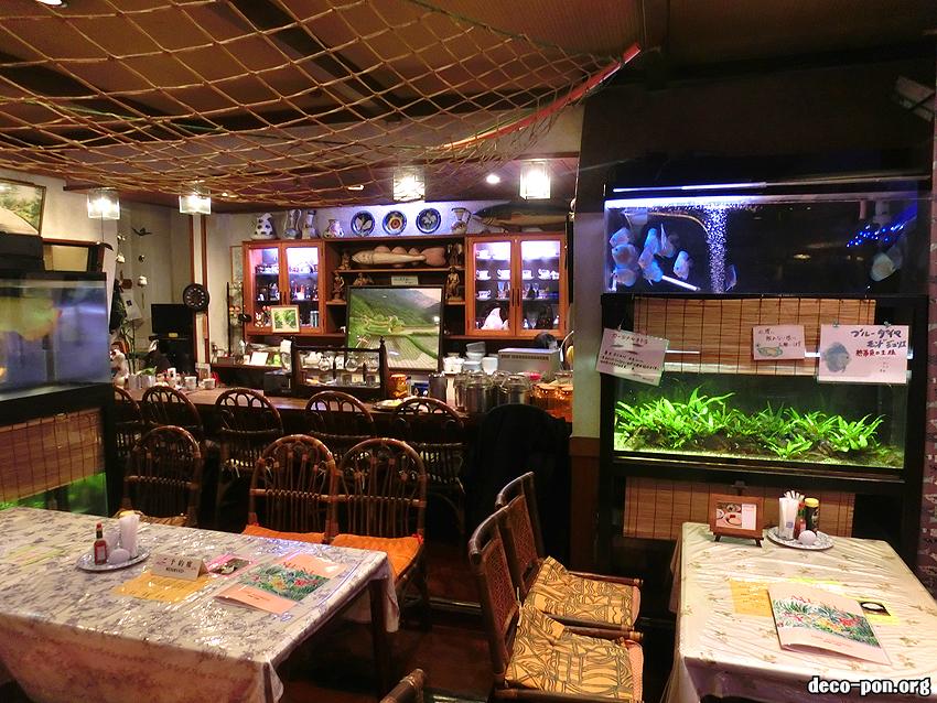 樹理絵水族館
