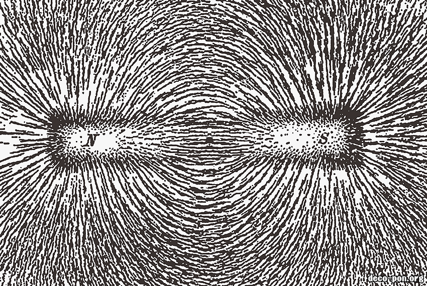磁気が脳に及ぼす影響(心霊現象・幻覚)
