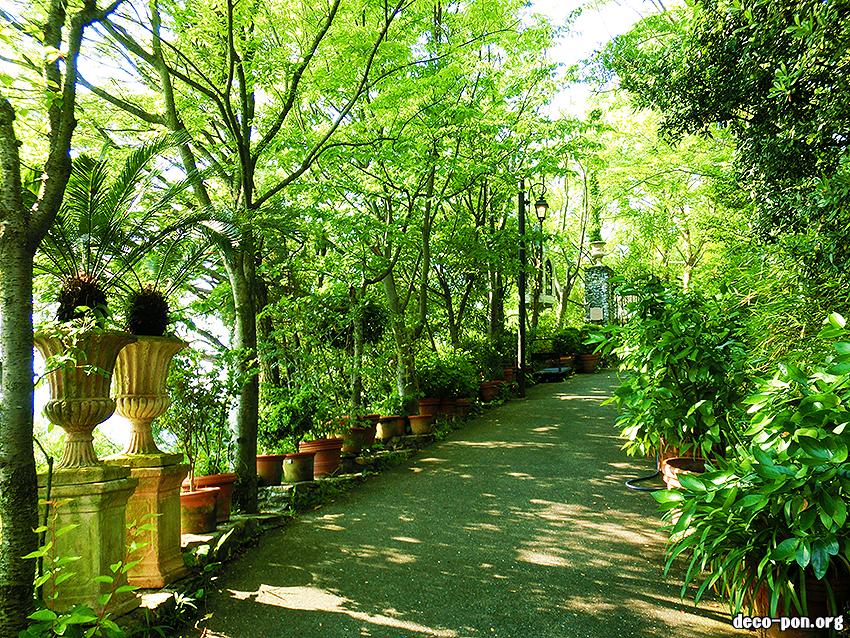 香川三豊市カフェ/ ヴェランダ (Veranda)